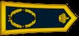 لواء الجيش