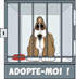 CHIENS A ADOPTER