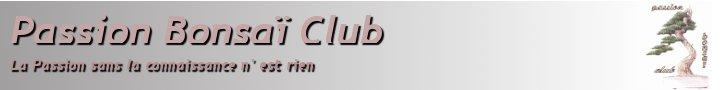 Passion Bonsaï club