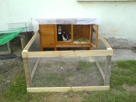 fabriquer une cabane a cochon d 39 inde. Black Bedroom Furniture Sets. Home Design Ideas
