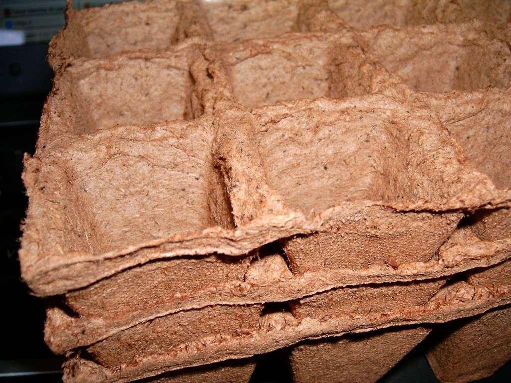 Semilleros biodegradables compr se pueden deshacer al - Tierra para semilleros ...
