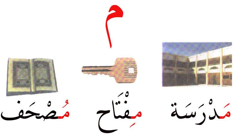 حرف الميم Group5arabs