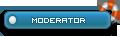 Server Moderator