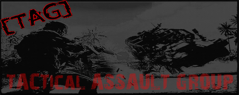 TAG - Tactical Assault Group