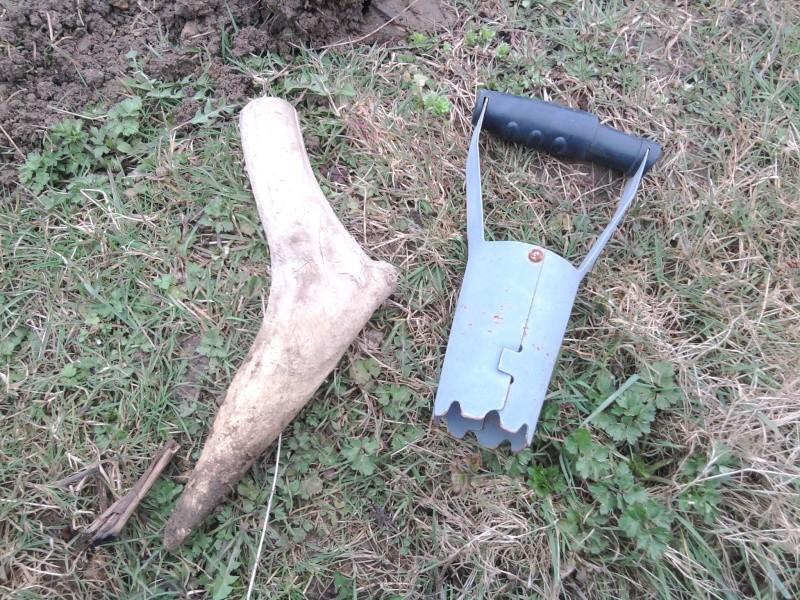 planter ds pommes de terre