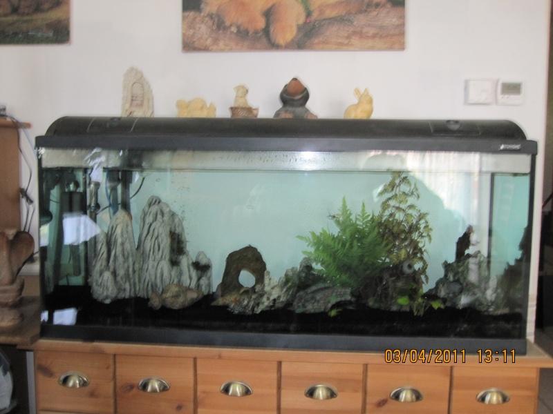 vds aquarium complet 240 litres cage oiseaux manteau chien. Black Bedroom Furniture Sets. Home Design Ideas