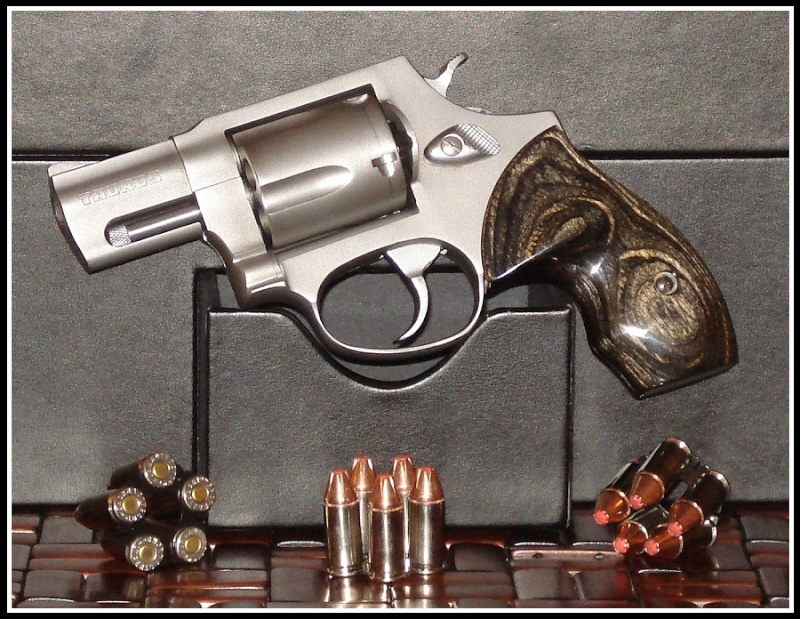 Show Us Your Taurus Revolvers - Page 64