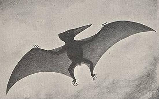 Cryptozoologie Culmont Haute-Marne 1856 reptile volant paléontologie Pterodactylus anas ptérodactyle anas Bernard Heuvelmans dépouille The Illustratred London News Gray forum