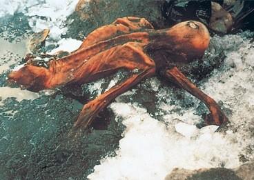 paléoanthropologie forum anthropologie alpes momie autriche Ötzi Ötzal 19 septembre 1991 âge de bronze lac de Constance Adige Balzona Italie reconstitution Alfons Adrié Kennis