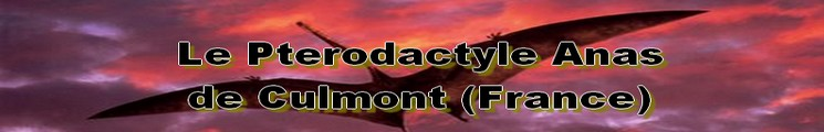 Cryptozoologie Culmont Haute-Marne 1856 reptile volant paléontologie Pterodactylus anas ptérodactyle anas Bernard Heuvelmans dépouille The Illustratred London News Gray