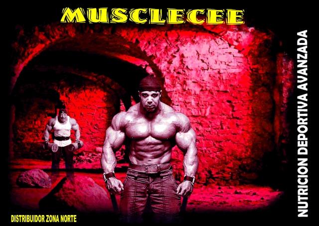 MUSCLECEE.COM