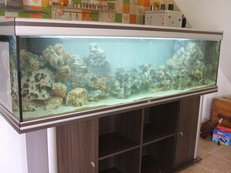 Changement de d co malawi 600l for Aquarium 600l