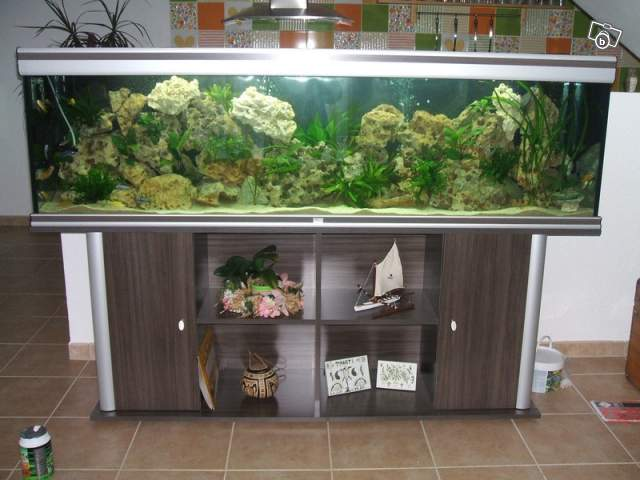 Vends aquarium 600l aquatlantis for Aquarium 600l