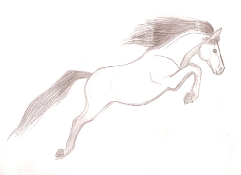 Le cheval sautant le fameux obstacle invisible - Dessiner un cheval facilement ...