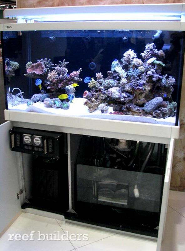 Aquarium eau de mer occasion a vendre for Aquarium meuble pas cher