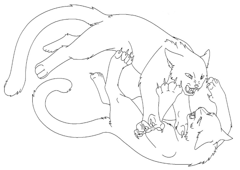 Warrior Cats 10 Coloring Pages