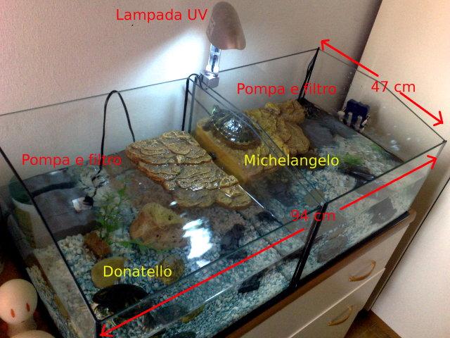 Bonnie e clyde for Lampada raggi uvb per tartarughe